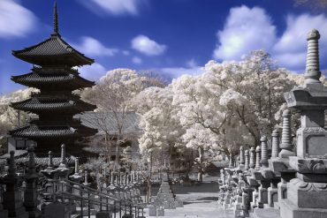 На ПМЖ в Японию