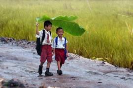 Волонтерство в Восточном Тиморе