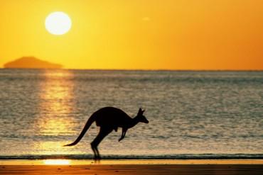 Визы в Австралию. Обзор