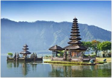 Волонтерство на Бали
