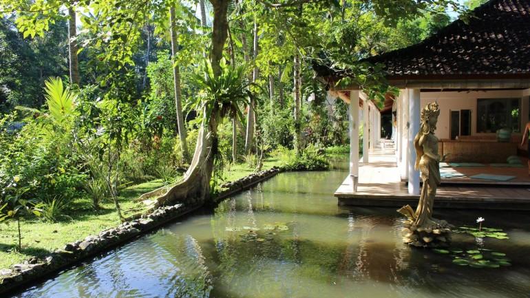 Волонтерство и стажировки на Бали