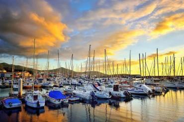 Возможности для стартапов в Новой Зеландии