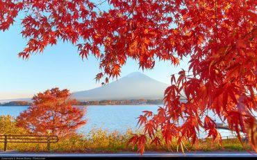 Япония может облегчить визовый режим для россиян