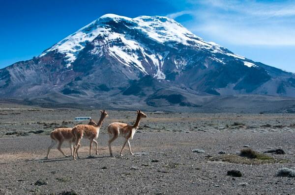 Гора Чимборазо