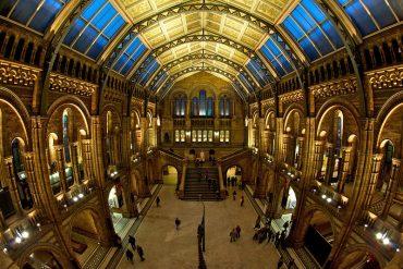 Стажировки в музеях Европы