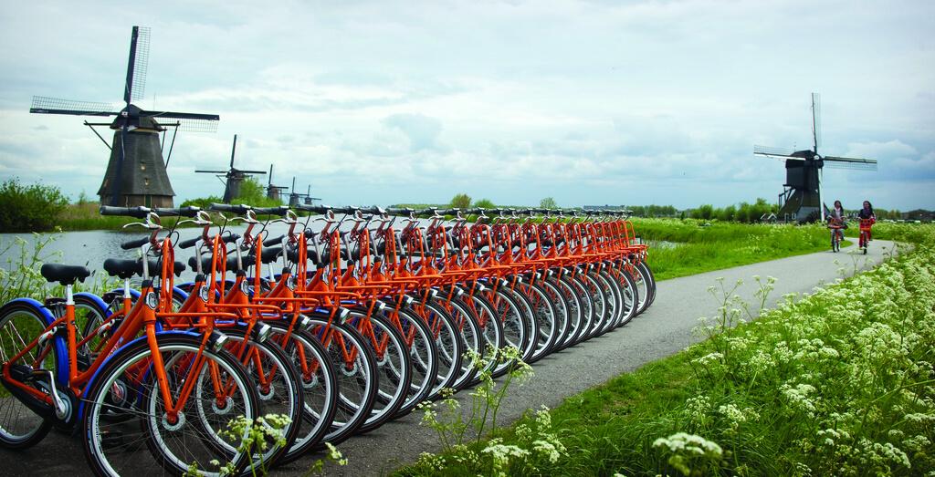 Стипендии в Голландии