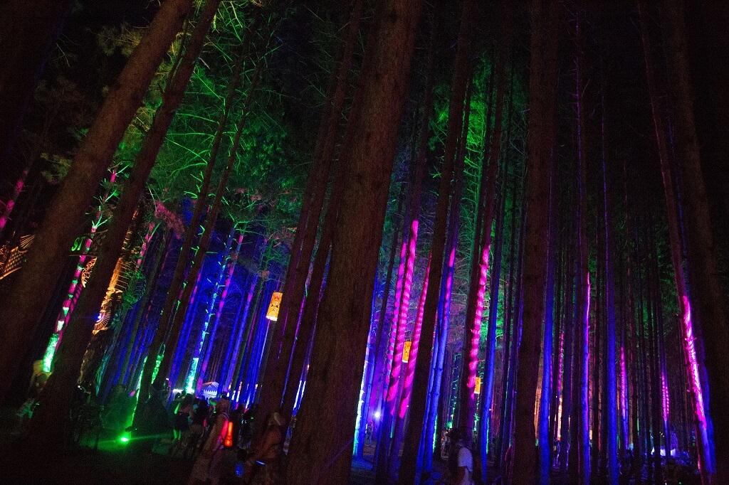 Фестиваль Electric Forest