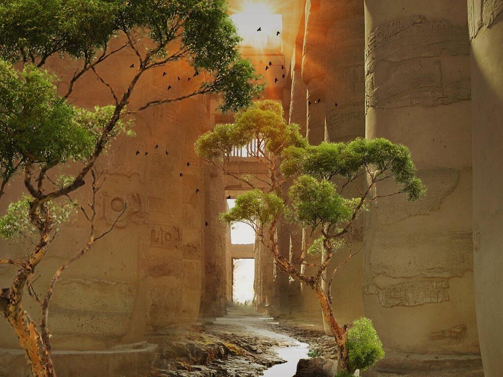 ekovolonterstvo-v-egipte