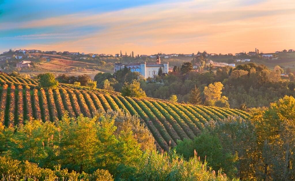 vinodelni-v-italii