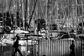 Пособия для иммигрантов в Новой Зеландии