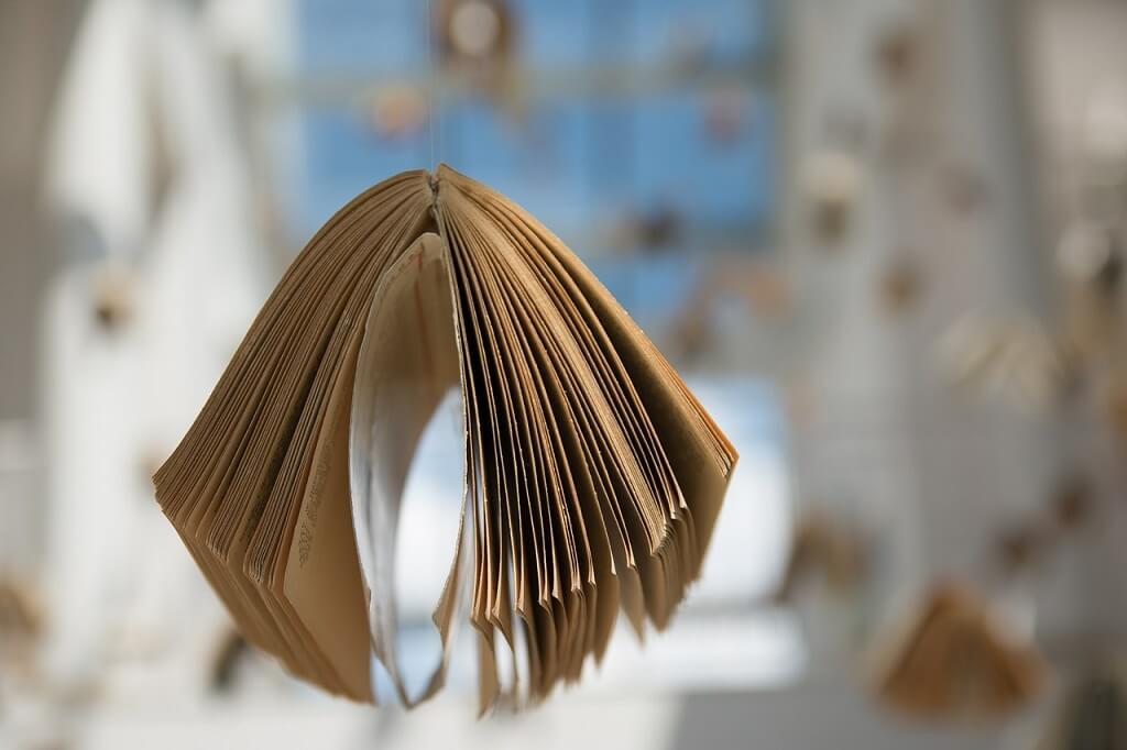 Волонтерство на книжных ярмарках