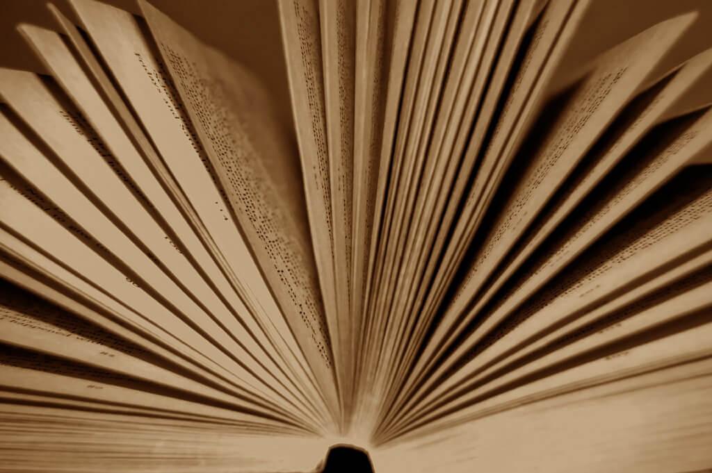 Волонтерство на литературных фестивалях