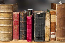 Волонтерство на литературных мероприятиях