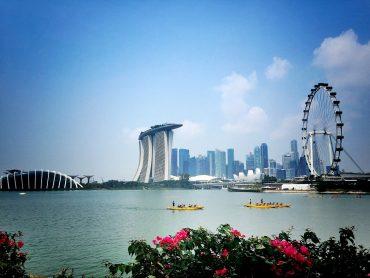 Стипендия в Сингапуре