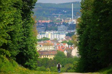 Австрия. Работа для студентов