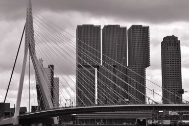 Востребованные специальности в Голландии