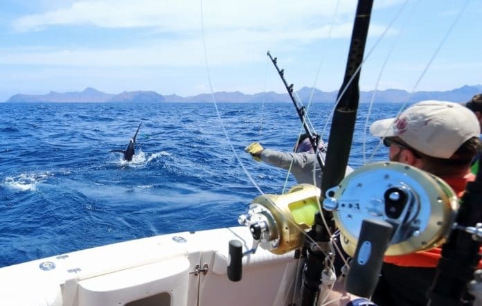 Особенности морской рыбалки
