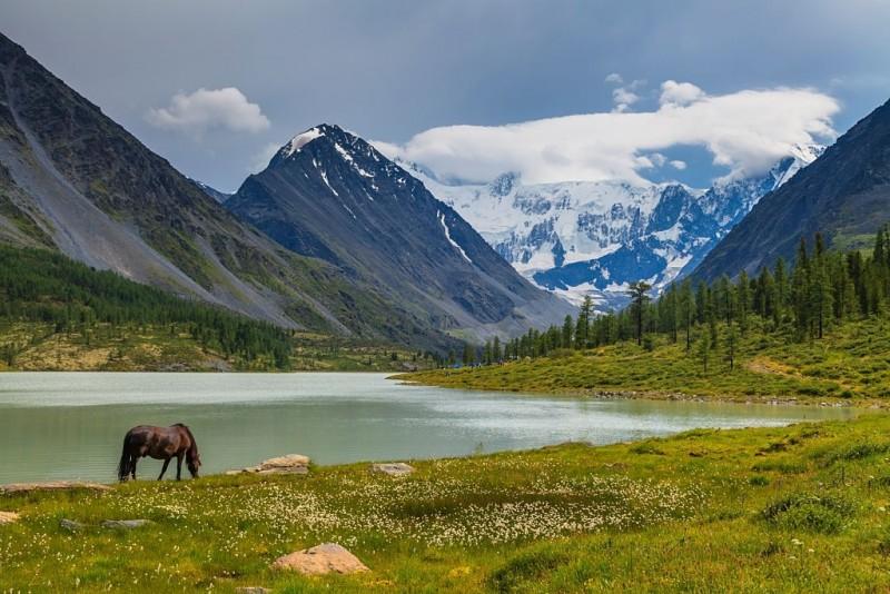 Походы по Камчатке и Алтаю - отдых среди дикой природы